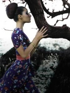 Удовое дерево - источник ценного парфюмерного ингредиента