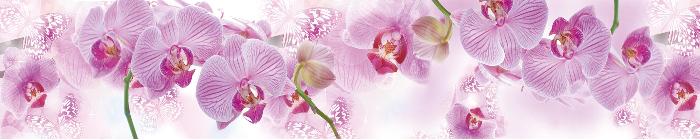 Скинали с орхидеями
