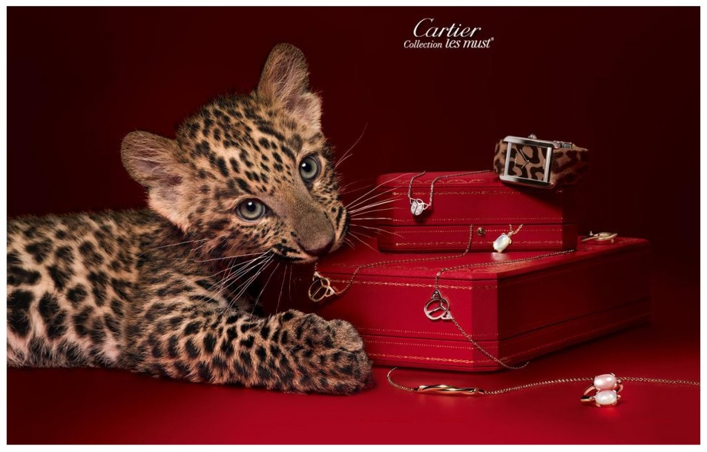 cartier_les_must 1